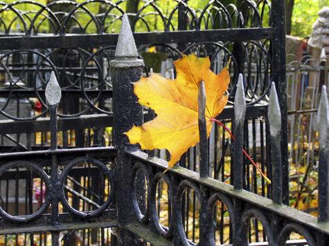 Частных кладбищ в Подмосковье не будет
