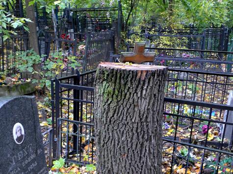 Москвичам будет легче попасть на кладбище