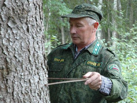 Лесники ищут главную елку в подмосковных лесах