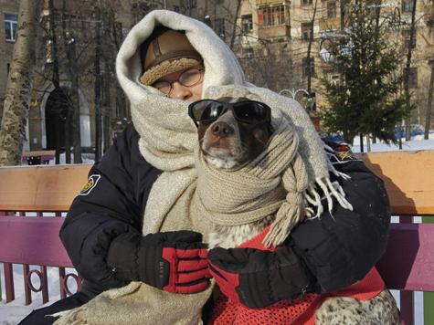 Как пережить собачий холод по-человечески