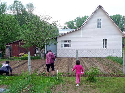 Победа садоводов под напряжением