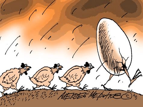Зубры боятся политических мышей