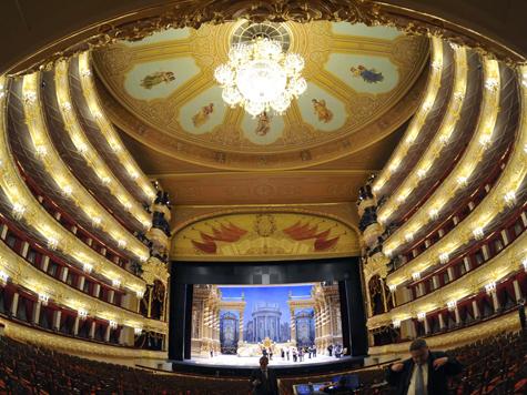 Концертмейстер Большого театра пострадал от выставочного вора