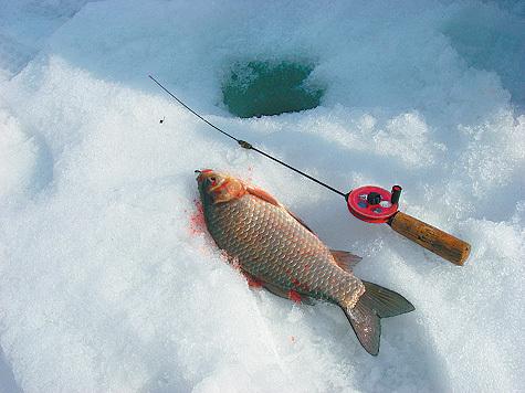 сезон ловли карася в мелких водоемах