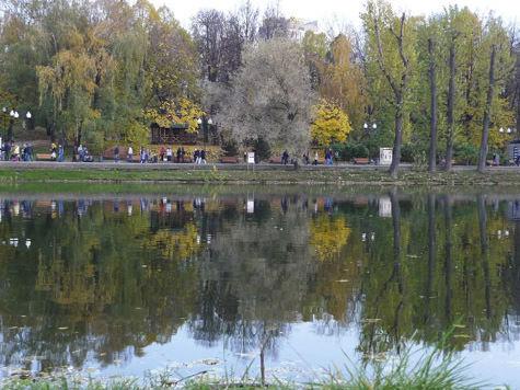 Москвичи, останки которых нашли вмашине на дне пруда, погибли 9 лет назад в результате несчастного случая