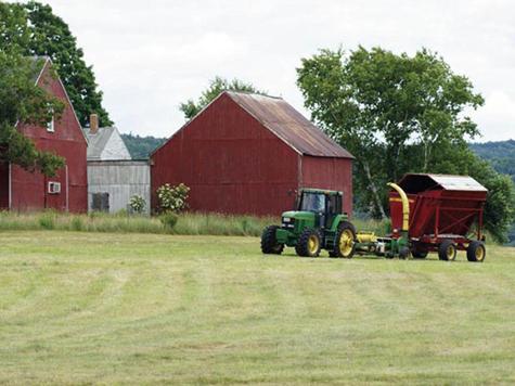 Государство возьмет фермеров под крыло