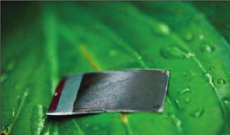 Прорыв: Учёные создали искусственный листочек