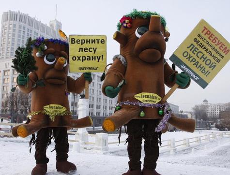 Защитники леса уходят на зимовку