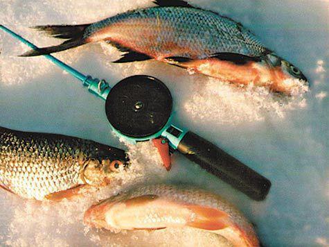 Рыбалка на щуку в свердловской обл
