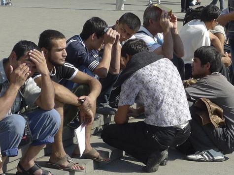 Законопослушные мигранты