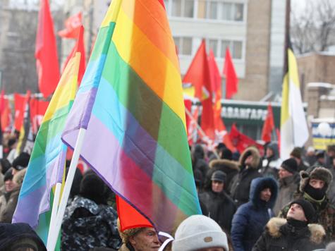 Финские геи заступились за питерских