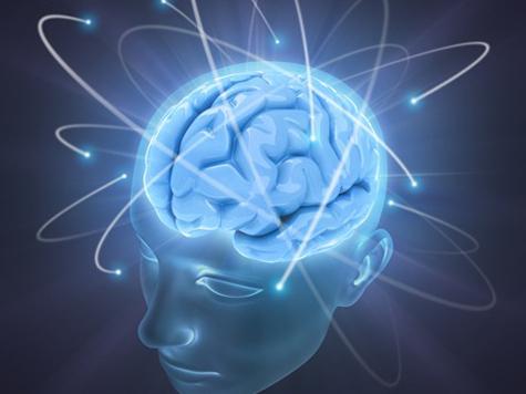 В 45 – мозг не ягодке под стать