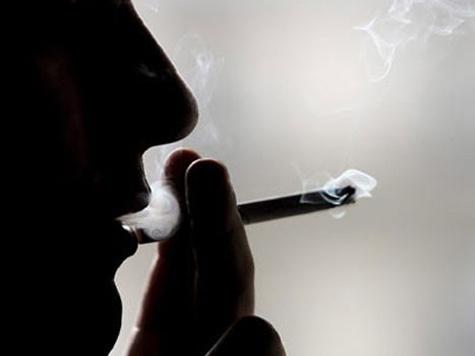Мышам можно курить и не волноваться