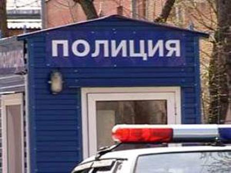 Полицейским стало тесно на одной дороге
