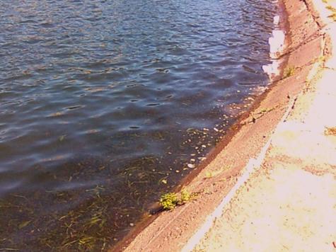 Ангарские пруды будут обмениваться водой