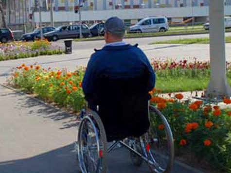 Инвалиды станут ухаживать за растениями с помощью кресла