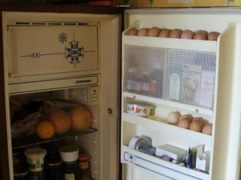Горожан научат пользоваться холодильником с выгодой