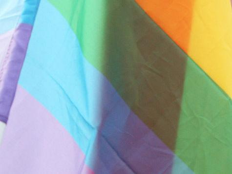 Госдума намерена увеличить штраф за пропаганду гомосексуализма до миллиона рублей