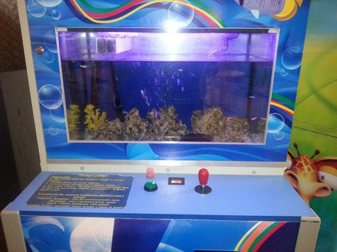 В Москве установили игровой автомат-аквариум, который зоозащитники окрестили «аттракционом жестокости»