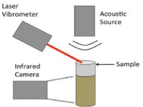 Для поиска взрывчатки ученые предложили использовать звуковые волны