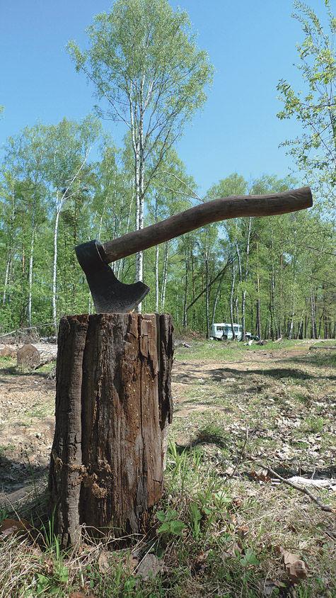 Селятинский лес отбили у застройщика!