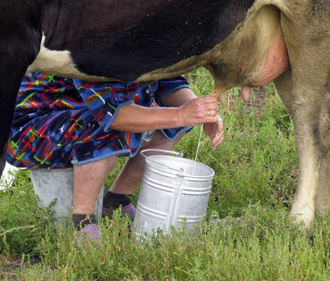 Молочные реки возьмут начало в Московии