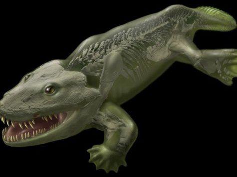 Первые наземные животные появились на территории современной России
