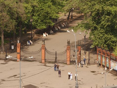 Дорогу в небо проложат через парк «Сокольники»