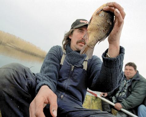 На рыбалку становись!