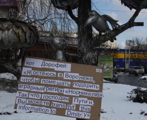 Путин не выполнил «требования» кота Дорофея
