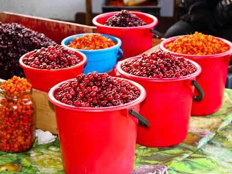 В Тюменской области продолжается развитие отрасли переработки овощей и дикоросов