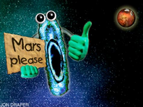 Пропущенная сенсация: Жизнь на Марсе была обнаружена еще в 1976 году