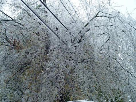 Ледяной дождь пошел Парку новобрачных на пользу