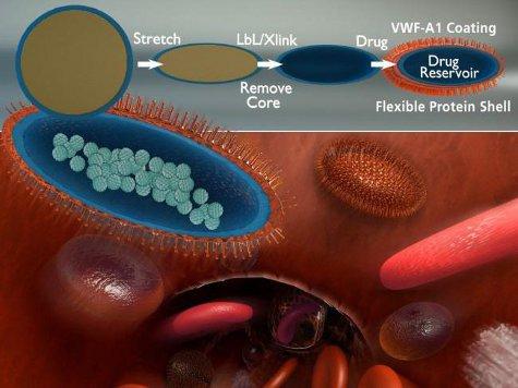 Созданы искусственные тромбоциты