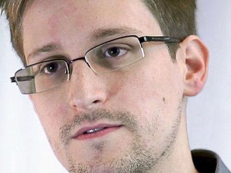 Сноудены не послушались адвокатов, презрев Кучерену
