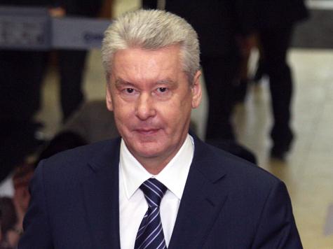 Оппозиция поддержала мэра Москвы