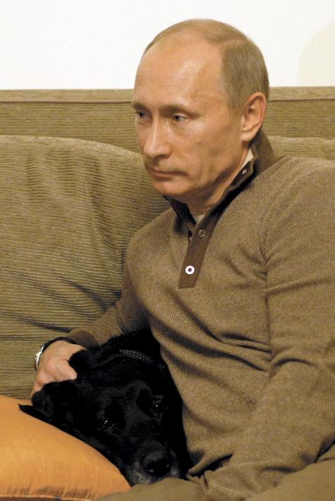 Путин стал богаче
