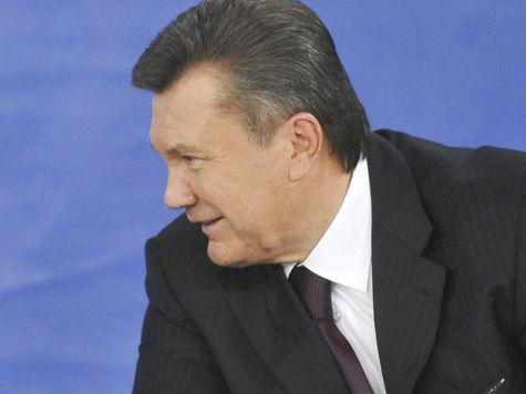 Дрова для Евромайдана