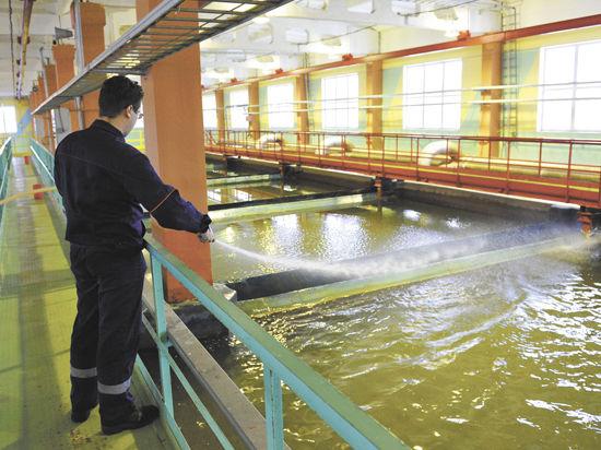 Шесть муниципалитетов подключат к «Чистой воде»