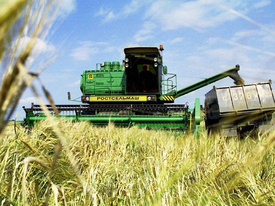 Крым потеряет 5-миллиардный урожай из-за ограничения Украиной поставок воды