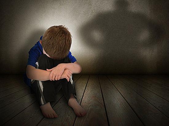 Уполномоченный по правам человека в Московской области  не считает побои и унижения «допустимым способом воспитания ребенка»