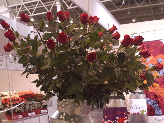 8 марта не обойдется без слабоалкогольных роз