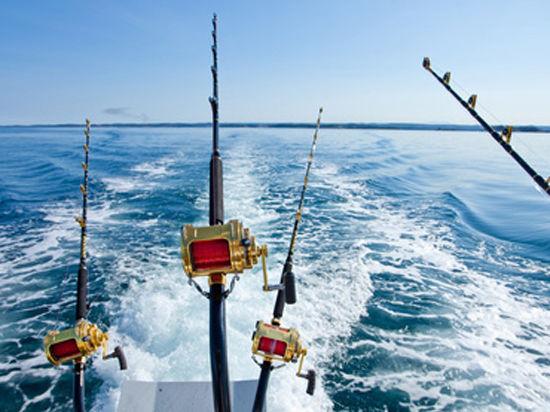 Норвежцы арестовали российское судно из-за сбросов рыбы