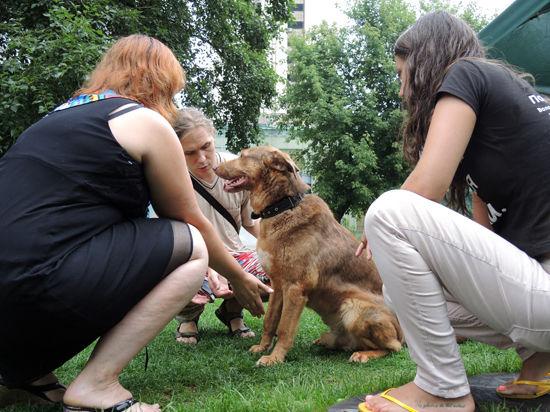 Митино превратится в рай для горожан и их собак