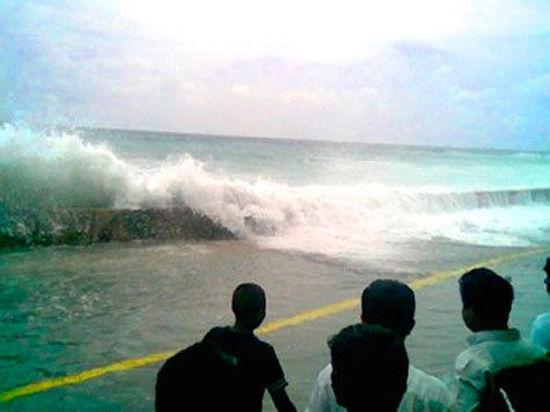 long essay on tsunami