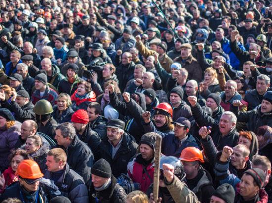 На Майдане в Киеве растят укроп и разводят свиней
