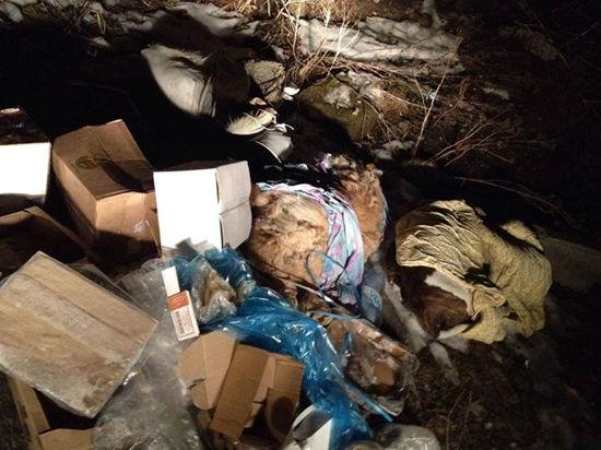 Догхантеры уничтожили стаю собак в Царицыно