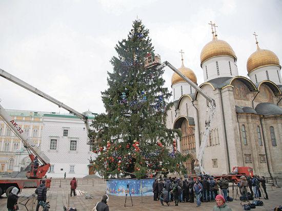 Главная елка страны родом из Подмосковья