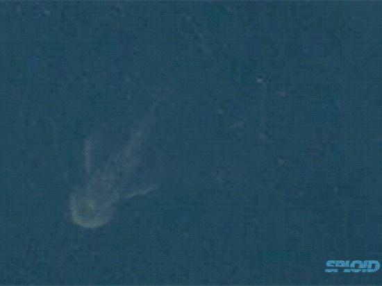 Спутники разглядели в шотландском озере Лох-Несс странное движущееся существо