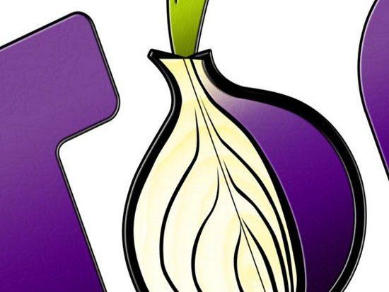 Эксперты: 2014-й - год анонимных сетей и шифрования данных